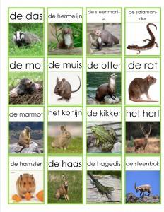 dieren memorie