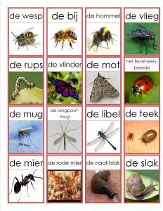 kriebelbeestjes memorie