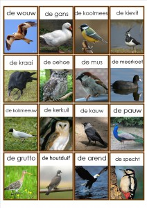 vogels memorie