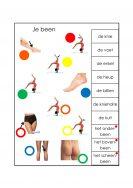lichaam-het-been